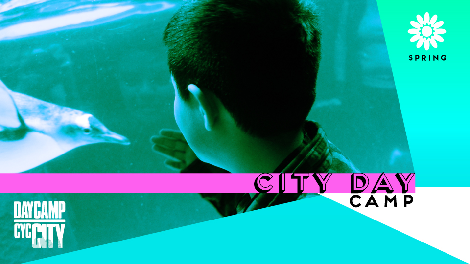 City Day Camp