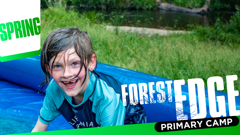 Forest Edge Spring Primary Camp